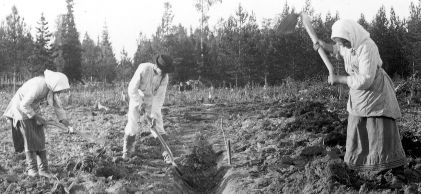 Peasants_in_finland
